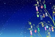 流星(星)に願いを☆彡